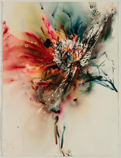 Untitled (6363)