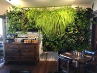 Cafe instalation