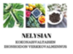 Verkkovalmennus NElysian.png