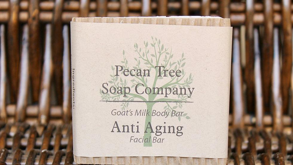 Anti Aging Facial Bar