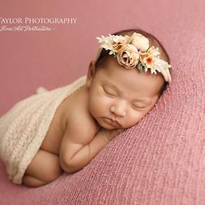Melbourne Newborn Photoshoot