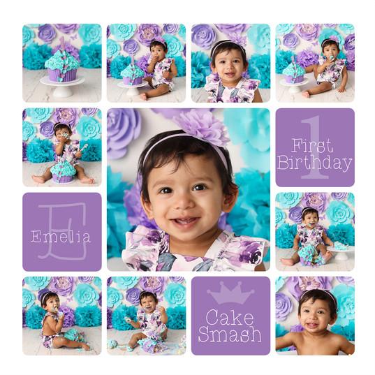 Teal and Purple Cake Smash