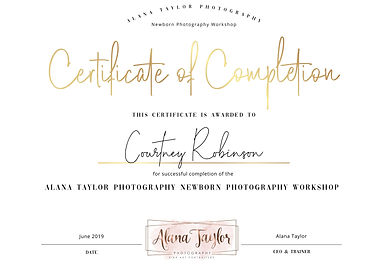certificate-of-completion-gold-overlay-85-x-11-a385_60f8ba2c217868_96069303_1.jpg