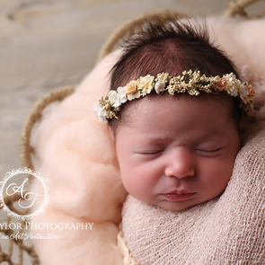 Props and Newborn Photography