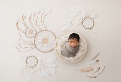 Newborn Baby Dream Catcher