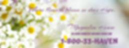 Spring cover.jpg
