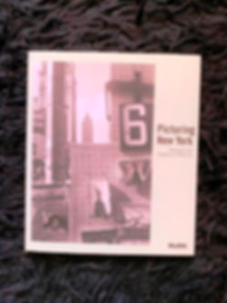 picturing new york, moma, book