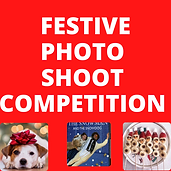 FESTIVE PHOTO SHOOT COMPETITION.png
