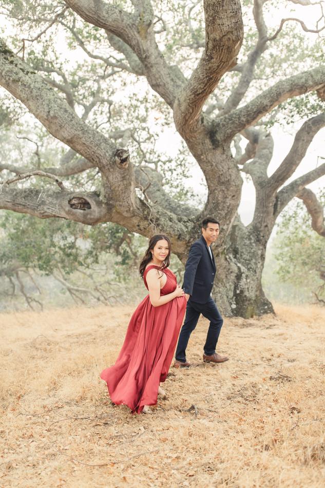 Stylish lifestyle authentic Marin San Francisco maternity session by Torrey Fox