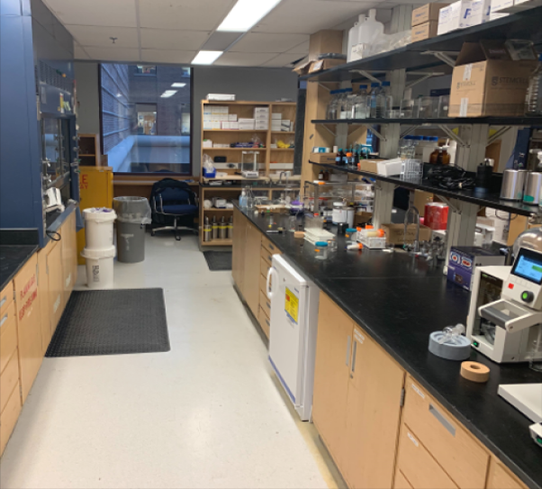 2nd floor lab space