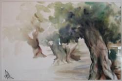 alberi_4b9f8bf8198a1_200x200