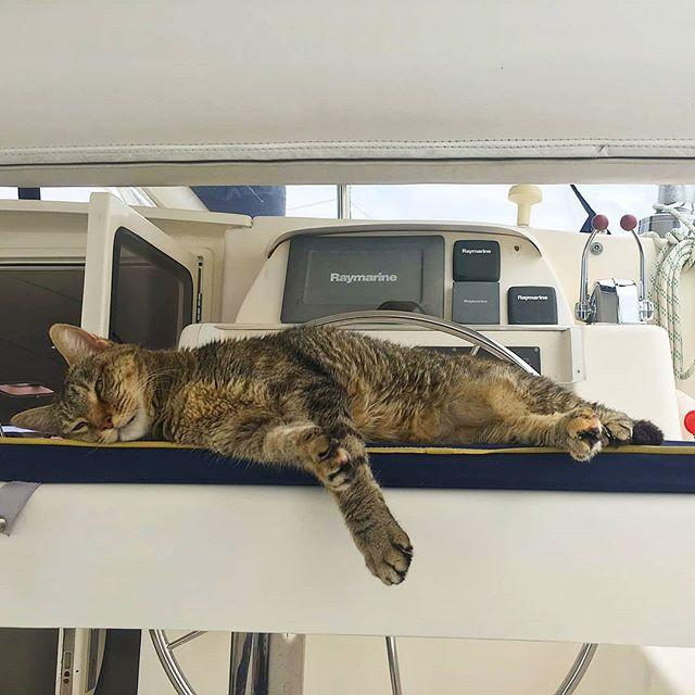 The Crew Sleeping on the Job