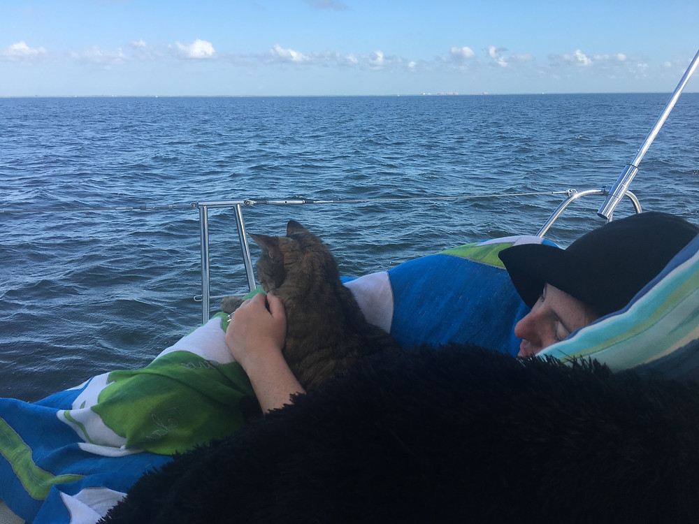 sailing catamaran, boat kitty, boat cat, sailing charters, sailing charter clearwater beach, sailing charter Dunedin, sailing charter Florida, boat charters clearwater beach, boat charters Dunedin