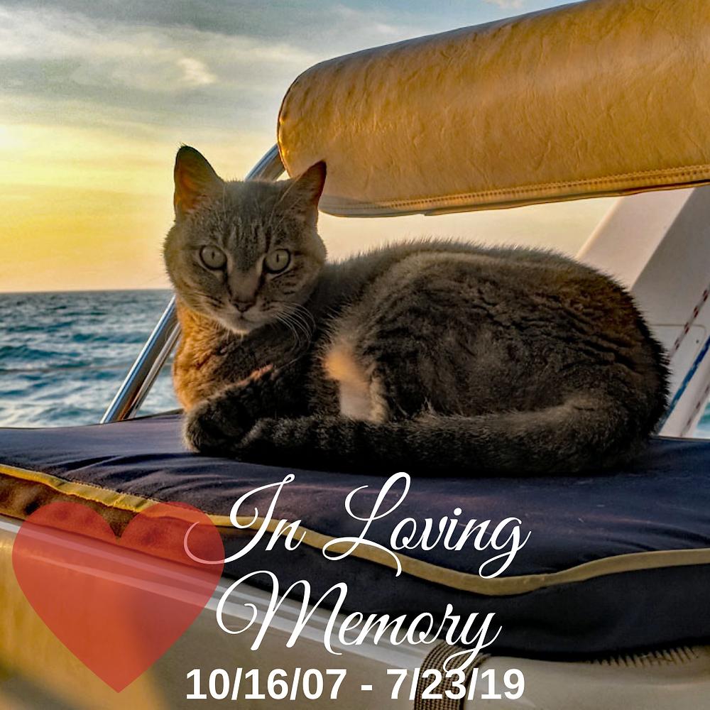 In Loving Memory, Lillie