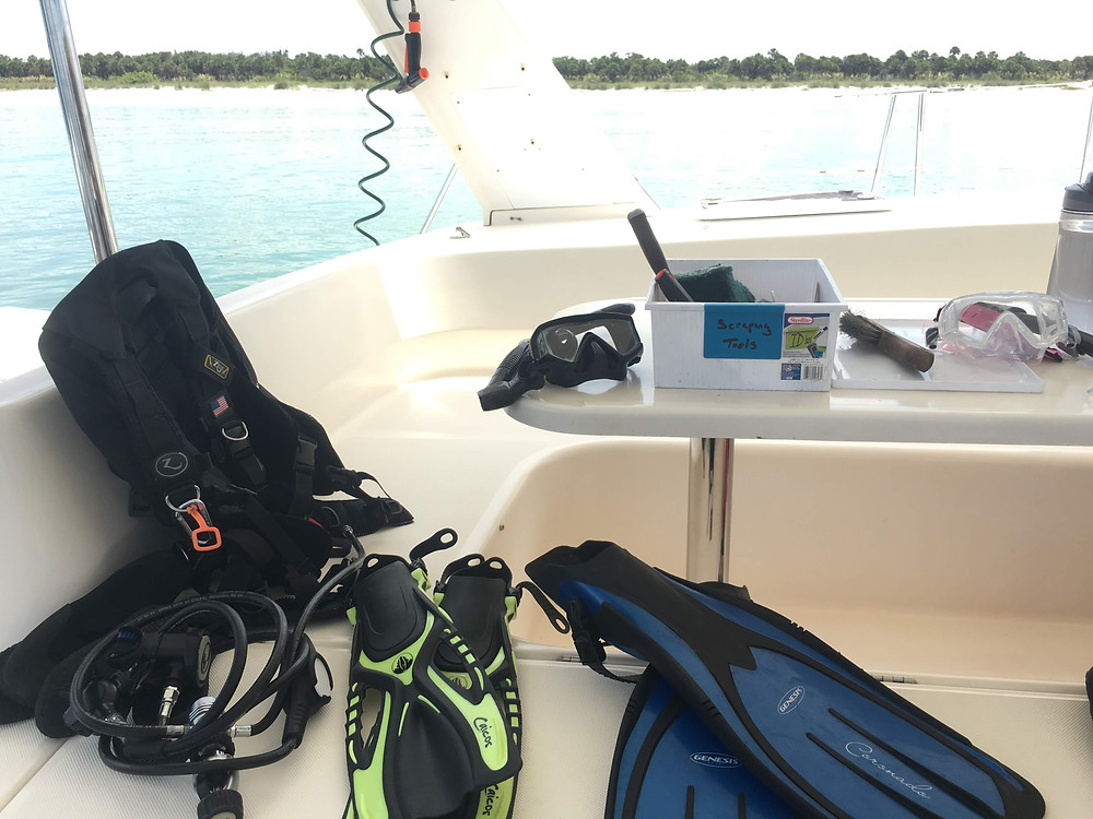 Snorkel and Dive Gear to Clean the Hulls