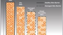 Ceramides - important skin component