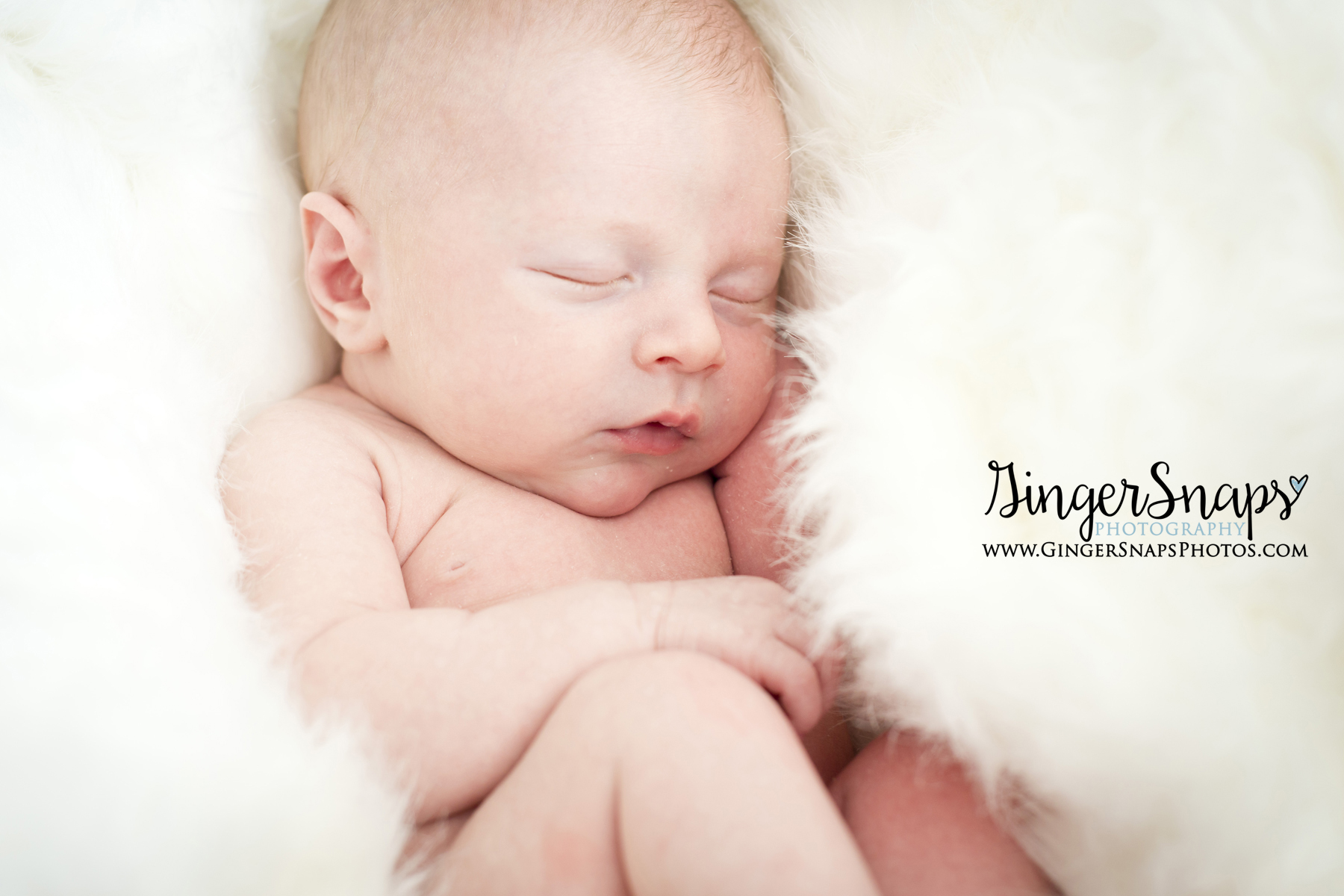 GingerSnaps Photography - 43.jpg