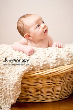 GingerSnaps Photography- 345.jpg