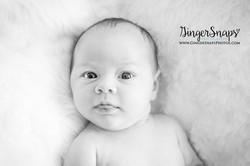 GingerSnaps Photography- 244.jpg