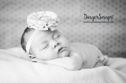 GingerSnaps Photography- 098.jpg
