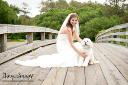 GingerSnaps Photography - 39.jpg