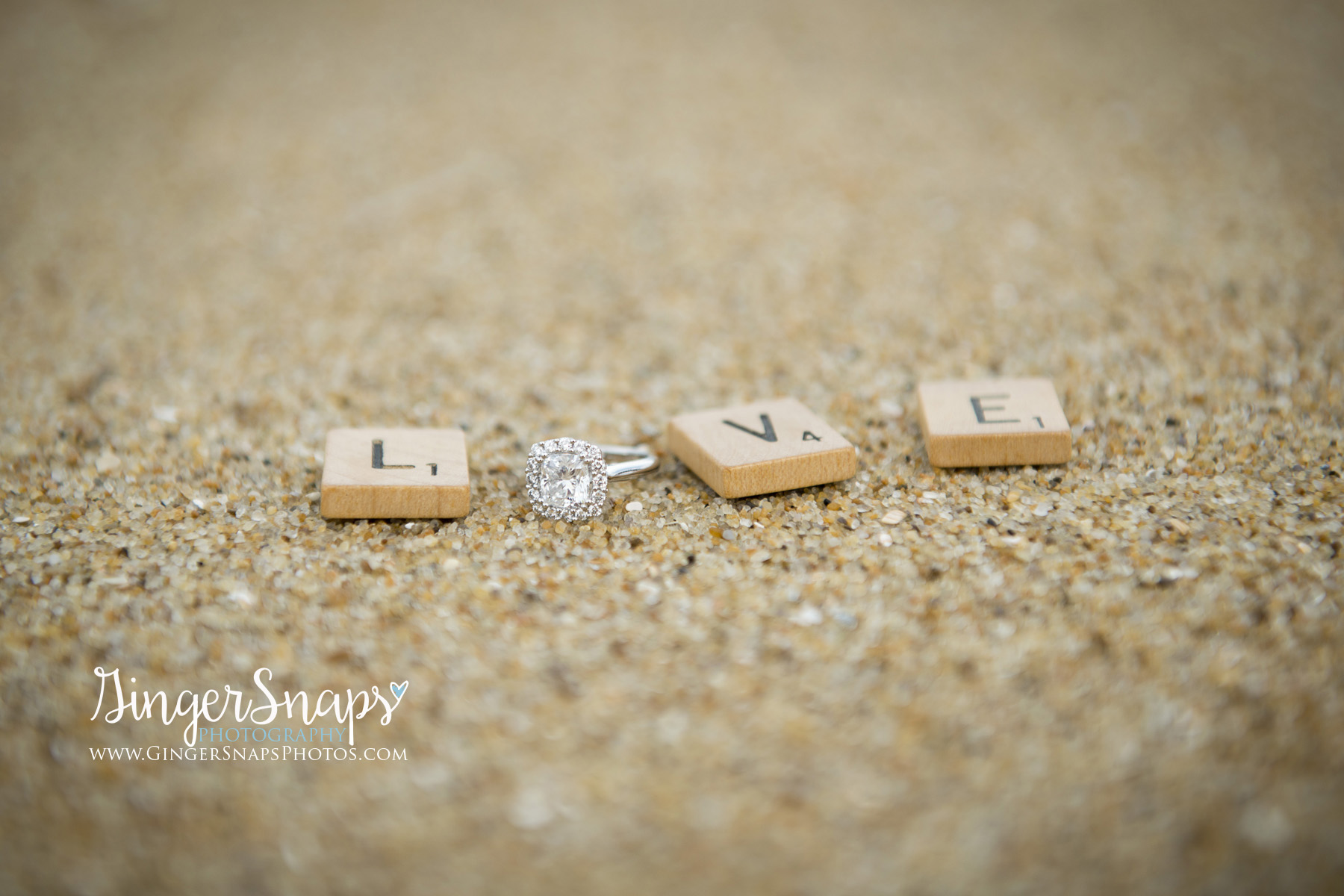 GingerSnaps Photography - 017.jpg