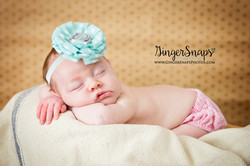 GingerSnaps Photography- 111.jpg