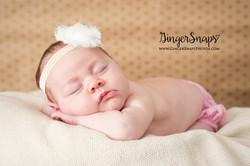 GingerSnaps Photography- 046.jpg