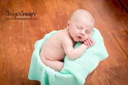 GingerSnaps Photography - 30.jpg