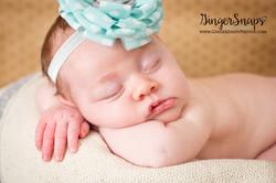 GingerSnaps Photography- 124.jpg