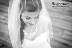 GingerSnaps Photography - 64.jpg