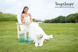 GingerSnaps Photography - 12.jpg