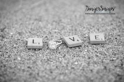 GingerSnaps Photography - 018.jpg