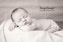 GingerSnaps Photography- 143.jpg