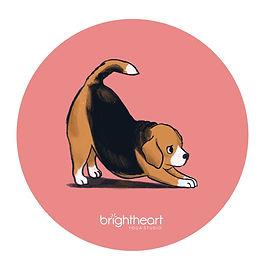 BHYs-Dog.jpg