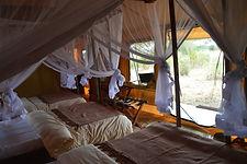 baobab-tented-camp.jpg