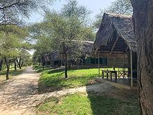 tarangire safari.jpg