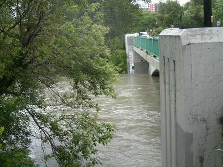 Elbow River Picture, June 20, 3 pm