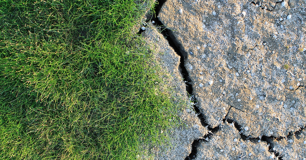 Drought_email_banner (3).png