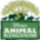 Animal Kingdom - Grupo Disney Julho 2018