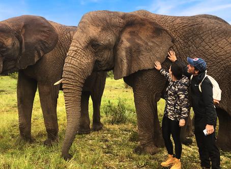 África do Sul com crianças  - Explorando a Garden Route