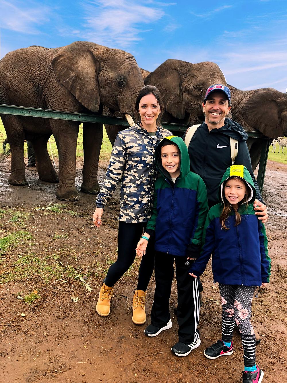 Santuário de Elefantes, Knysna Elefant Park