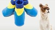Dog Socks 2XL