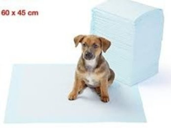 Toilet Training Pad (60X45 cm)