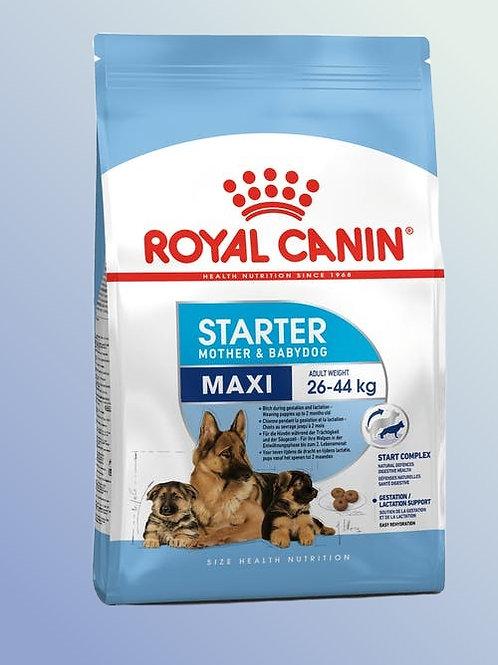 Royal Canin Maxi Starter 1 kg