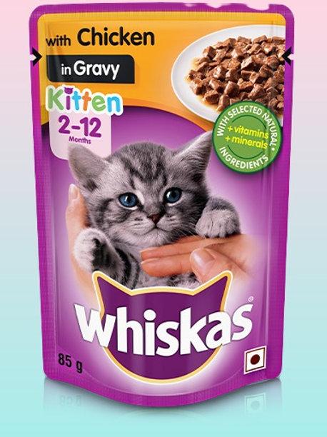 Whiskas Kitten Chicken in Gravy 85g