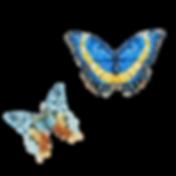 Aquarell-Schmetterling 6