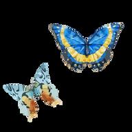 Aquarelle papillon 6