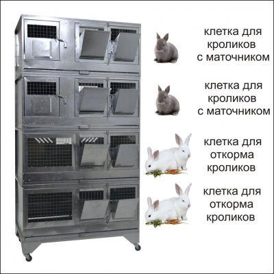 """Домашняя Ферма №7"" стандарт"