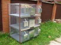 """Клетка для кроликов 2-3м с новой системой расположения маточного отделения """"МАКС"""